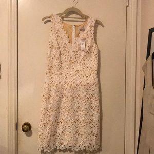 Ann Taylor Loft V- Neck Dress White Lace Size 2